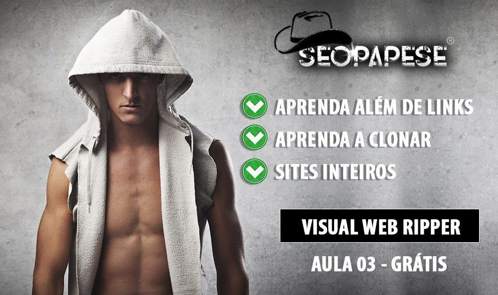 Visual Web Ripper Aula 03 - Curso SEOPAPESE